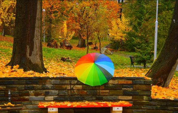Picture Autumn, Trees, Umbrella, Park, Fall, Foliage, Park, Autumn, Umbrella, Colors, Trees, Benches