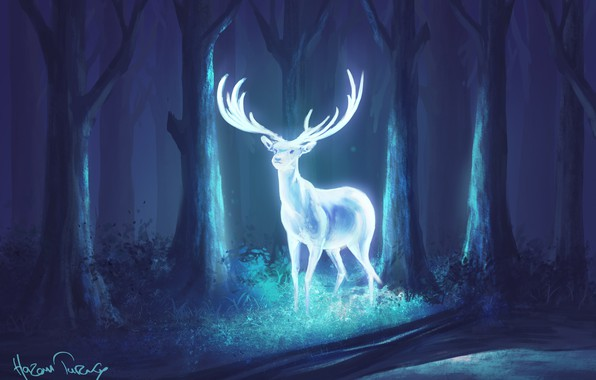 Picture forest, night, deer, fantasy, art, horns