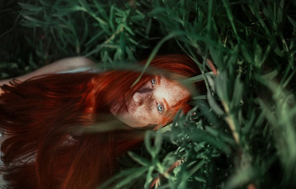 Picture grass, girl, face, mood, freckles, red, redhead, long hair, Ronny Garcia, freckled, Alison Sobarzo After …