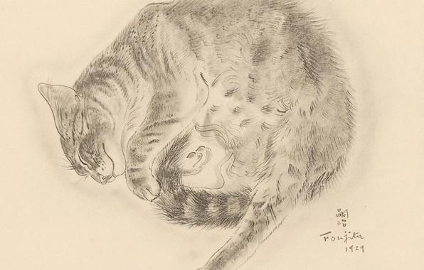 Picture cat, sleeping, fluffy, 1929, ulybaetsya, Tsuguharu, Fujita, The Book Of Cats