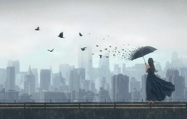 Picture girl, birds, the city, fantasy, rain, umbrella, art