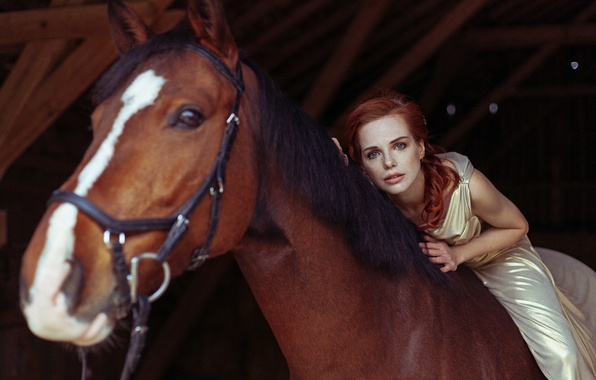 Picture look, girl, horse, horse, red, redhead