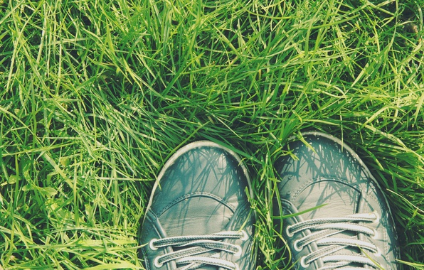 Picture Grass, Sneakers, Shoes, By Dima666666789