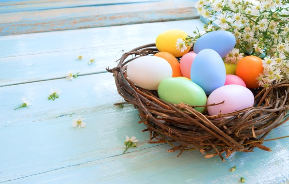 Picture chamomile, eggs, Easter, socket, Holiday