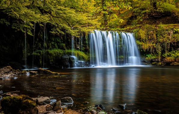 Photo wallpaper waterfall, trees, forest, nature