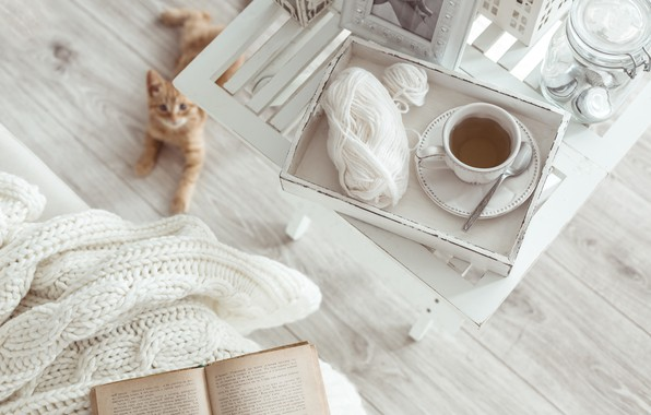 Picture winter, white, snow, wool, scarf, book, white, hot, winter, snow, cup, Cup of tea