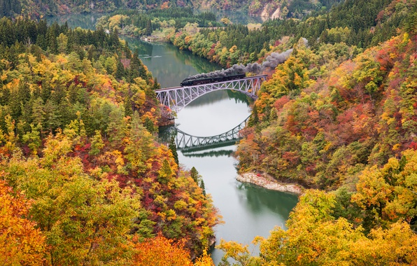 Picture autumn, trees, bridge, river, paint, train, the engine