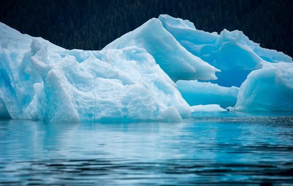 Picture ice, sea, nature, ice