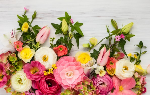 Picture flowers, roses, wood, pink, flowers, beautiful, peonies, composition, floral
