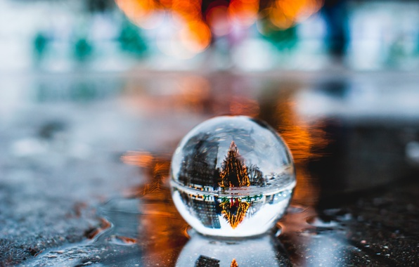 Photo wallpaper macro, reflection, new year, ball, puddle, tree, bokeh
