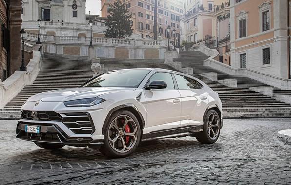 Picture Lamborghini, white, 2018, Urus