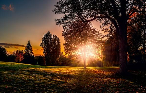 Photo wallpaper nature, autumn, sunset