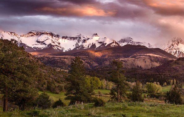 Picture forest, the sky, clouds, trees, mountains, clouds, valley, panorama, USA, Colorado, San Juan Mountains