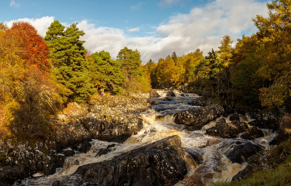 Picture autumn, forest, the sun, clouds, trees, river, stones, Scotland, River Cassley