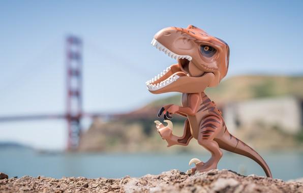 Picture background, toy, dinosaur, t-rex