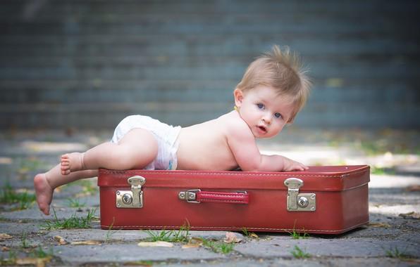 Picture surprise, baby, suitcase, diaper