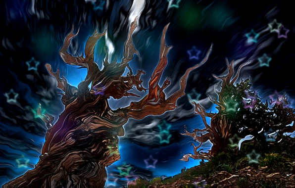 Picture the sky, stars, abstraction, rendering, glow, fantasy art, fabulous night, gnarled trees