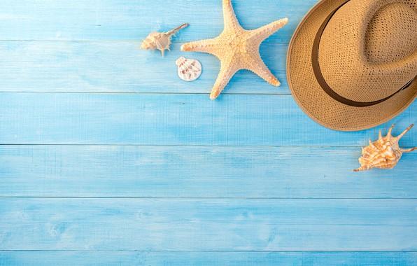 Picture summer, background, star, hat, shell, summer, beach, wood, blue, marine, starfish, composition, seashells