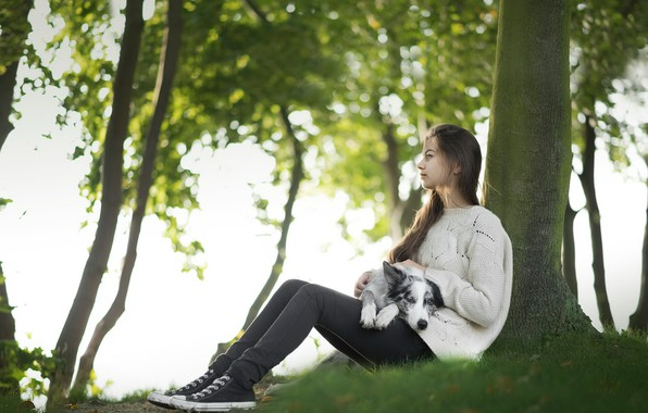 Picture girl, tree, dog