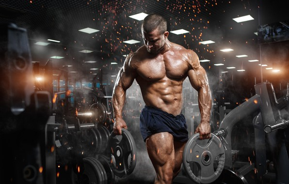 Picture muscle, muscle, bodybuilding, press, pose, training, athlete, fitness, gym, bodybuilder, training, abs, Gym, bodybuilder, barbell, …