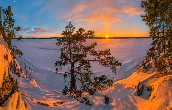 Picture the snow, Ladoga, snow, winter, trees, Karelia, pine, Russia, lake, Lake Ladoga, sunset