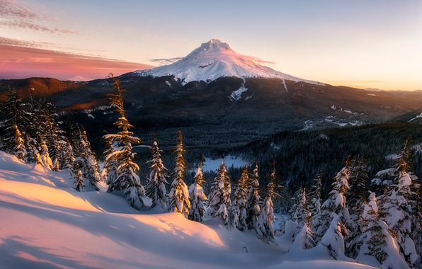 Picture winter, forest, the sky, light, snow, mountain, the evening, morning, USA, national Park, Washington, The …