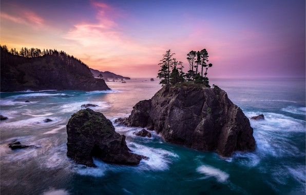 Picture the sky, trees, the ocean, rocks
