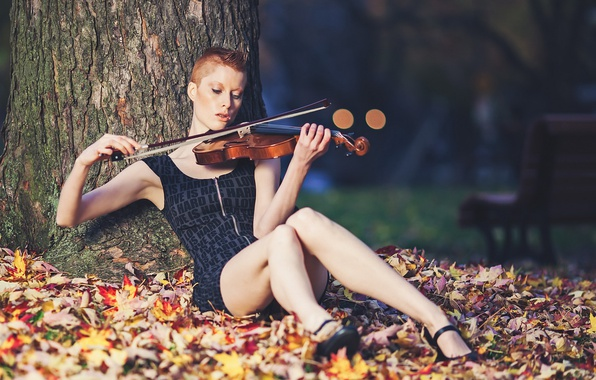 Picture music, violin, Caitlyn, Sound of bokeh