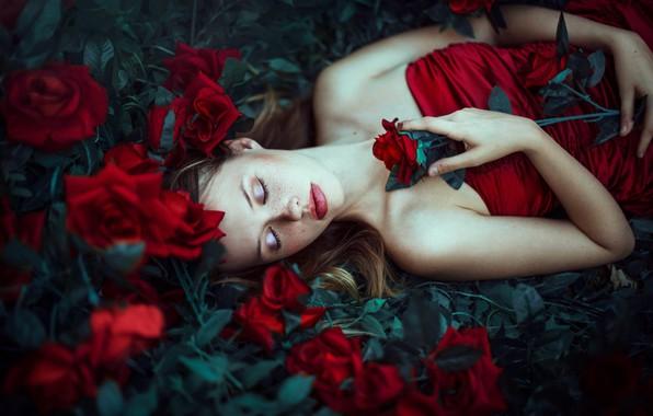Picture flowers, mood, sleep, roses, makeup, freckles, Ronny Garcia, sleeping girl, Patty Anwandter