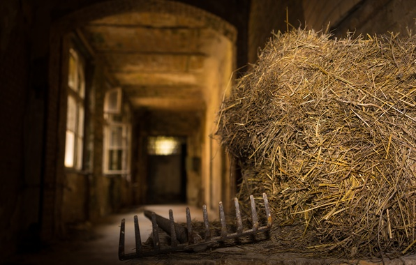 Picture the barn, hay, bokeh, rake