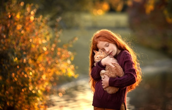 Picture kitty, hair, girl, red