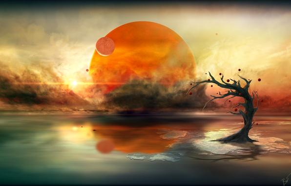 Picture the sun, clouds, tree, planet, alien calm