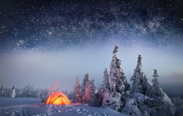 Picture winter, forest, the sky, stars, snow, night, tent