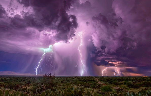 Picture the sky, clouds, clouds, zipper, lightning, desert, cacti