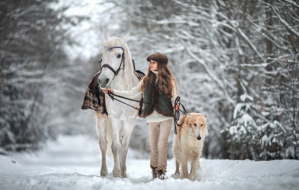 Picture winter, snow, horse, dog, girl