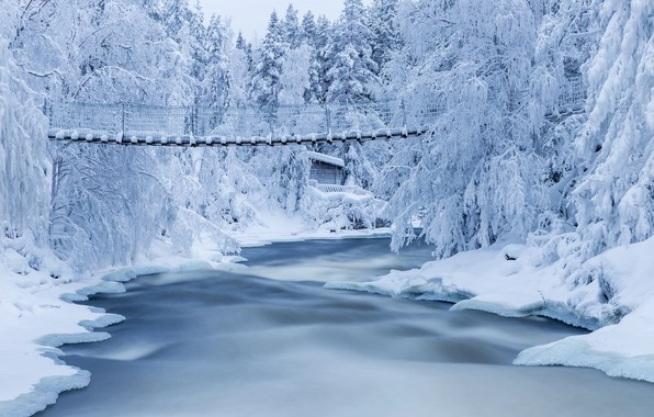 Picture winter, snow, trees, landscape, nature, river, the bridge, forest, Finland