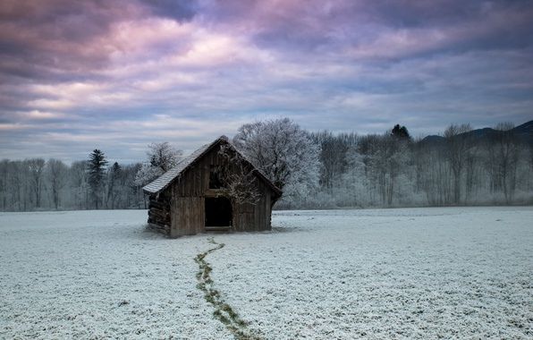 Picture winter, field, house, Follow me