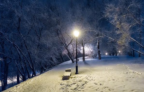 Picture winter, trees, Park, the evening, lantern