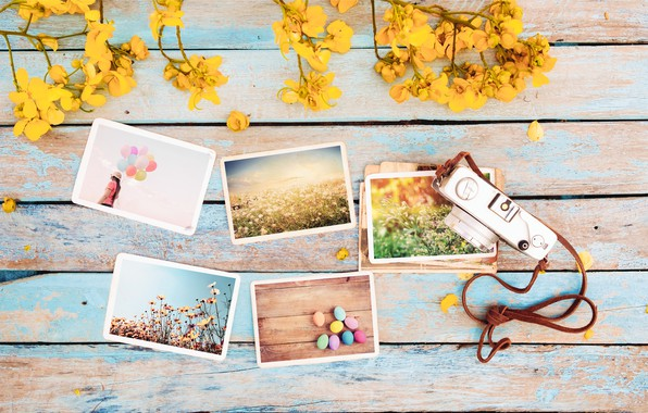 Picture flowers, photo, eggs, spring, camera, colorful, Easter, wood, flowers, camera, spring, Easter, eggs, decoration, tender