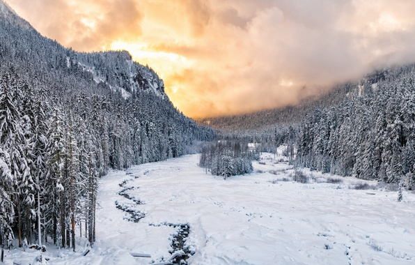Picture Sunset, winter, snow, national park, Nisqually River valley, Mount Rainie