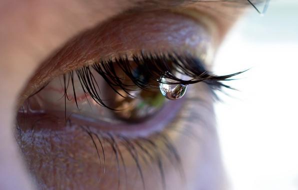 Picture macro, eyes, tear