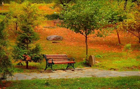 Picture Autumn, Bench, Park, Fall, Park, Autumn, Colors