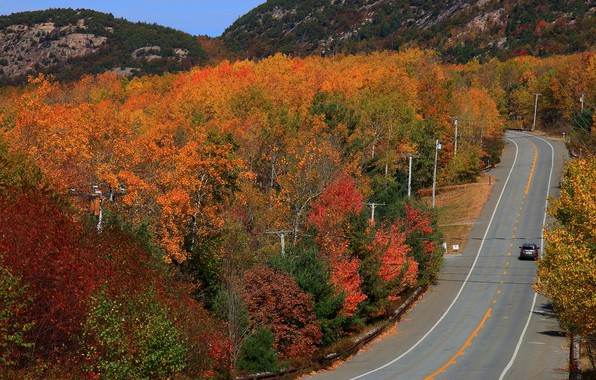 Picture road, auto, autumn, forest, the sun, trees, mountains, highway, USA, the view from the top, …