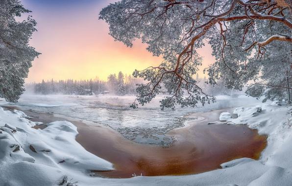 Picture winter, snow, nature, river