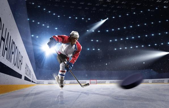 Picture light, sport, ice, gloves, helmet, athlete, male, stick, hockey, washer, uniform, stadium, floodlight, hockey player, …