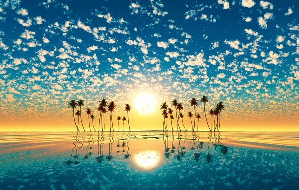 Picture water, the sun, sunset, reflection, palm trees, island