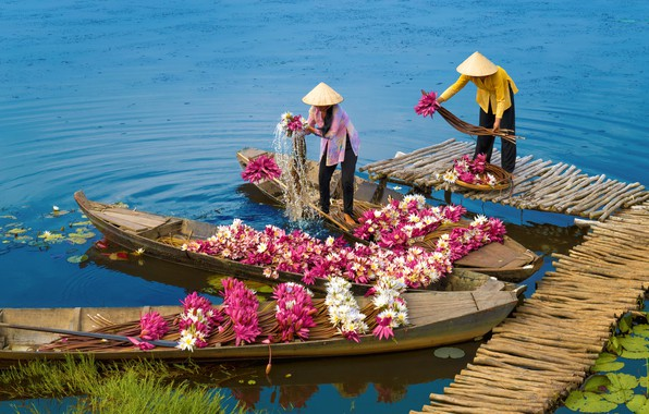 Picture water, boat, Asia, water Lily