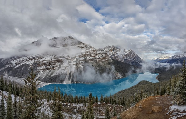 Picture mountains, nature, Banff National Park, Alberta, Canada, Peyto Lake