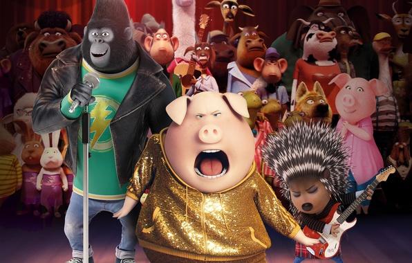 Picture music, monkey, rabbit, dance, animal, gorilla, bull, elephant, animated film, pig, animated movie, porcupine, Sing, …