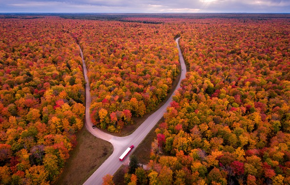 Picture road, autumn, forest, the sky, clouds, trees, machine, horizon, USA, the view from the top, …
